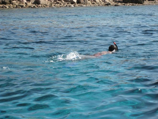 Buceando en el Mar Rojo